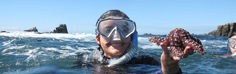 Laguna Beach Snorkeling