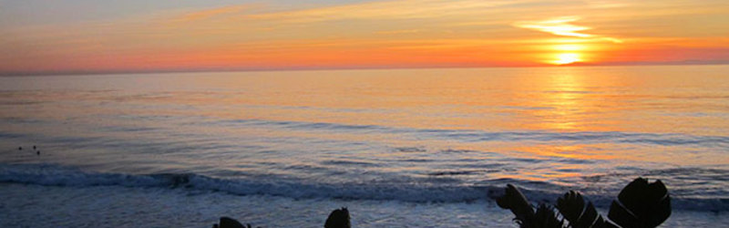 Sunset Sounds of Laguna Beach